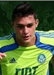 Miguel Antonio Bianconi Kohl