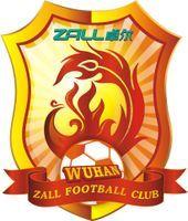 Wuhan Zhongbo